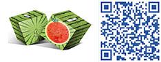 水果样式印刷盒